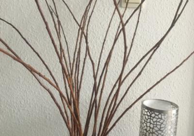 Weidenkätzchen-Zweige in der Glasvase u