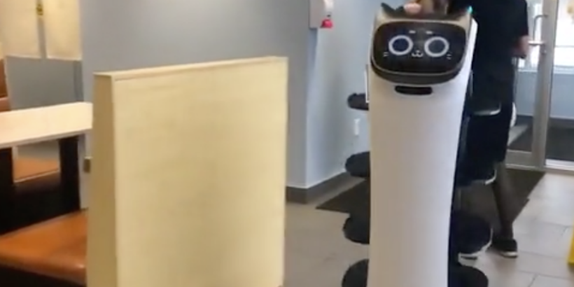 """Die ersten Service-Roboter sind bereits im Betrieb: Erleichterung für Kellner_innen in der Gastronomie. Nehmen uns die Roboter bald de Arbeit weg? Hoffentlich so schnell wie technisch möglich, denn richtige, """"gewerbliche"""" Arbeit tötet. Foto: Screenshot/Vimeo/PPudu,"""